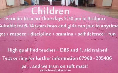 Bridport children learn martial arts